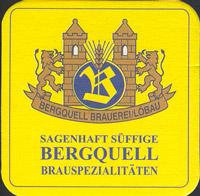 Bierdeckelbergquell-2-zadek