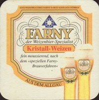 Bierdeckelfarny-6-small