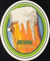 Pivní tácek hanusovice-11