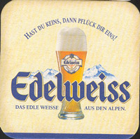 Pivní tácek kaltenhausen-2