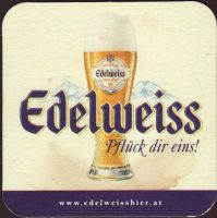Pivní tácek kaltenhausen-41-small