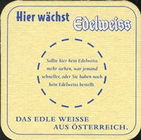Pivní tácek kaltenhausen-5-zadek