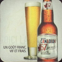 Beer coaster molson-78