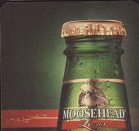 Pivní tácek moosehead-29-small