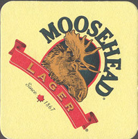Beer coaster moosehead-5