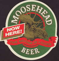 Beer coaster moosehead-9