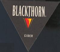 Pivní tácek n-blackthorn-2-oboje