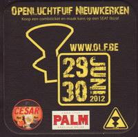 Pivní tácek palm-212-small