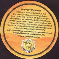 Pivní tácek uctivany-velbloud-1-zadek-small