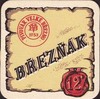 Pivní tácek velke-brezno-11-small
