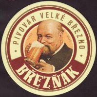 Pivní tácek velke-brezno-42-small