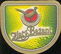 Pivní tácek zlaty-bazant-6